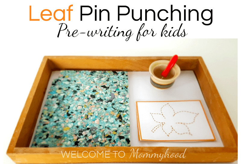 Montessori Fall Activities Leaf Pin Punching Hands On Learning